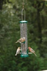 Quick-Clean Seed Tube Feeders